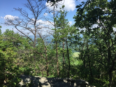 Hanging Rock State Park North Carolina View behind trees