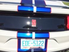 Ford GT 350 Blue stripe - brilliant paint