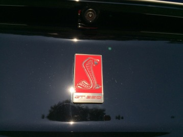Ford GT 350 Badge