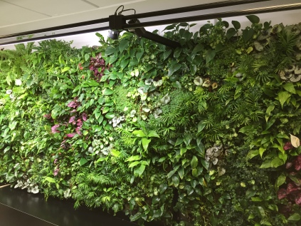 Plant wall at the Heathrow Garden Gate