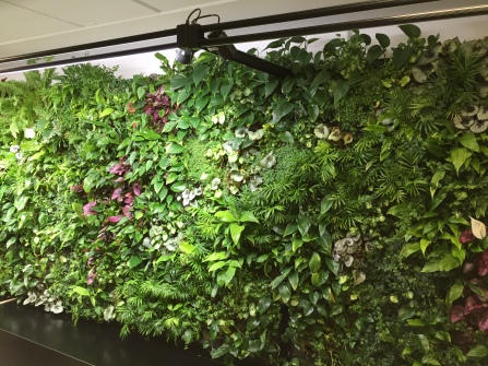 Plant wall at the Heathrow Garden Gate